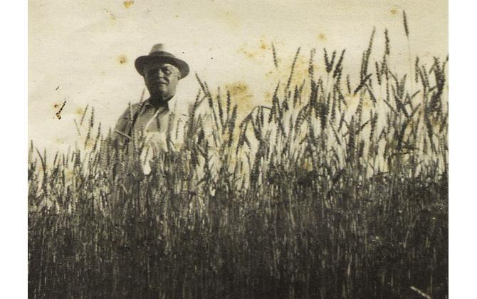 """Il 20 luglio il prof. Scarsella parla di """"Panzini, la terra e i contadini"""""""
